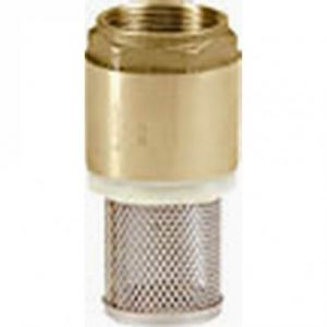 """1"""" (25mm) Brass Filter Footvalve (Female Connections)"""