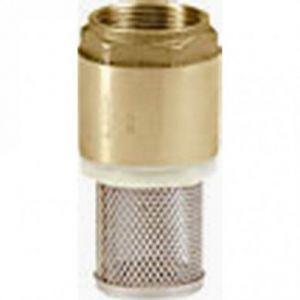 """3/4 """" (20mm) Brass Filter Footvalve"""
