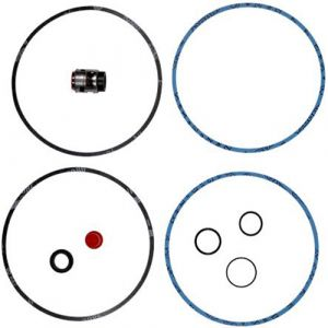 CR8 / CRN8 / CR16/ CRN16 Shaft Seal And Gasket Kit (Viton Bellows Type) - BUBV