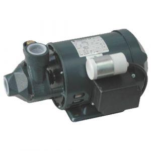 Lowara PM 60 Cast Iron Peripheral Booster Pump 240V
