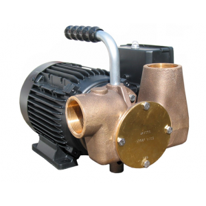 Lowara Utility 80 (110/1/50) Self Priming Versatile Pump 110v