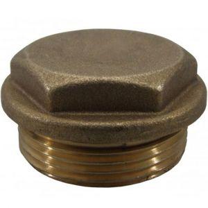 Brass Male BSP Plug