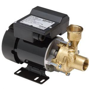 PH 35 ES/ 45 ES Peripheral Booster Pump 240V